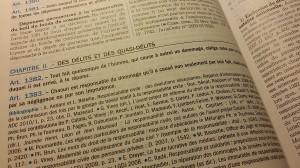 responsabilité délictuelle article 1382 du Code civil